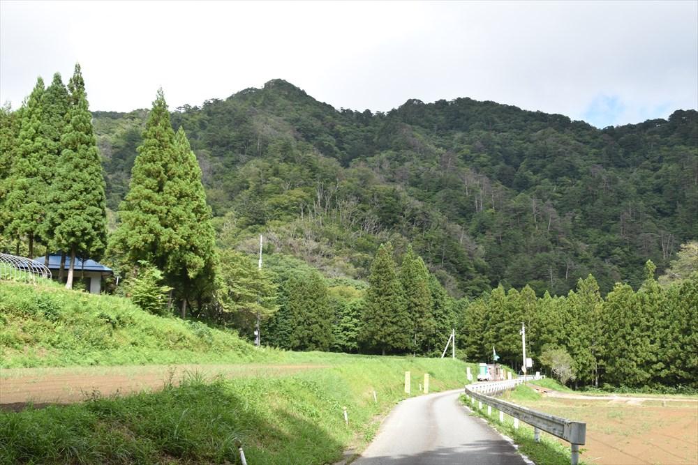 県道253号線から見た手倉山