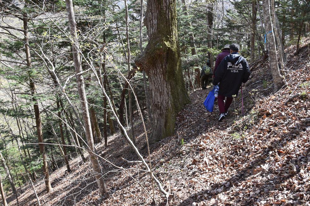 手倉山の斜面にわずかに作られた登山道